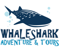 Whale Shark Adventure & Tours